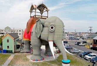 dom-slon-i-drugie-zdaniya2